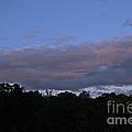 Natural Skyline by Susan Herber