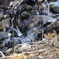 Natures Ice Maker by LeeAnn McLaneGoetz McLaneGoetzStudioLLCcom
