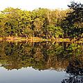 Natures Reflection Guatemala by Kurt Van Wagner