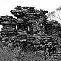 Natures' Ruins by Douglas Barnard