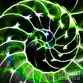 Nautilus Shell Ying And Yang - Electric - V1 - Green by Wingsdomain Art and Photography