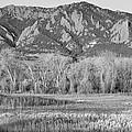 Ncar And Flatiron View Boulder Colorado Bw by James BO Insogna