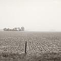 Nebraska Morning by Marilyn Hunt