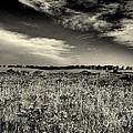 Nebraska Prairie Two In Black And White by Joshua House
