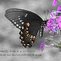Nectar Collector 2