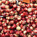 Nectarines - 5d17905 by Wingsdomain Art and Photography