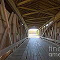 Neet Covered Bridge Interior by Alan Look