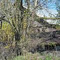 Neglected Farm Property Three by Tina M Wenger