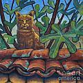 Neighbours Cat by Nikolai Kraneis