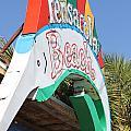 Neon Pensacola by Deborah Hughes
