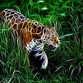 Neon Tiger by Steve K