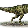 Neovenator Salerii, A Prehistoric Era by Sergey Krasovskiy