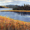 Nestucca River And Bay  by Chriss Pagani