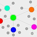 Network by Henrik Lehnerer