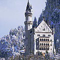 Neuschwanstein Castle by Anthony Citro