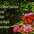 Never Too Late by Rebecca Samler