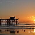 New Day On The Beach by Carol McGunagle