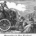 New England: Harvest, 1830 by Granger