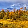 New Hampshire Fall Color Part Deux by Bill Barber