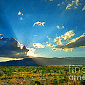 New Mexico Desert by Betty LaRue