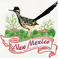 New Mexico State Bird The Greater Roadrunner by Walter Colvin