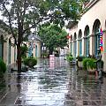 New Orleans After Rain by Robert Margetts
