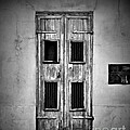 New Orleans Classic Doors by Perry Webster