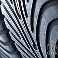 New Racing Tires by Carlos Caetano