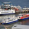 New York City Sightseeing Boats by Frank Romeo