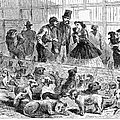 New York: Dog Pound, 1866 by Granger
