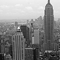 New York by Living Color Photography Lorraine Lynch