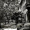 New York Sidewalk by Eric Tressler