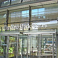 New York Times Reflection by Alice Gipson