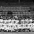 New York Yankees, C1921 by Granger