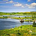 Newfoundland Landscape by Elena Elisseeva