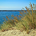 Newport Bay In Oregon by Athena Mckinzie