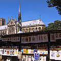 Newstand Next To Notre Dame by Jon Berghoff
