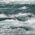 Niagara River Rapids 2 by Rose Santuci-Sofranko