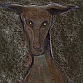 Nice Doggie by Peter  McPartlin