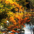 Niels' Third Pond by John Herzog