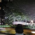 Night Look At Columbus Circle by Cathy Brown