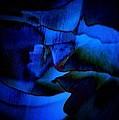 Nightly blues