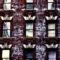 Nine  Windows by Maria Scarfone