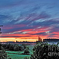Nisqually Valley Sunrise by Sean Griffin