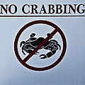 No Crabbing by Bill Cannon