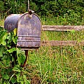 No Mail Today by Marilyn Smith