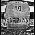 No Parking by Blake Richards