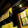 Nocturnal Nola by Lizi Beard-Ward