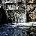 Normandale Falls by Susan Herber