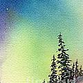 Northern Lights - D by Mohamed Hirji